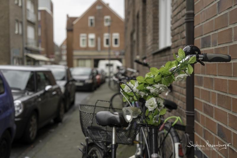 Fahrradschmuck grün