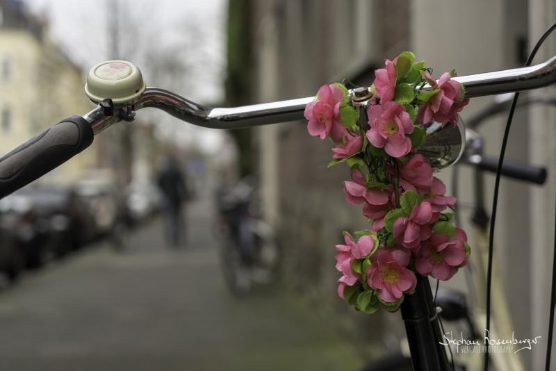 Fahrradschmuck pink